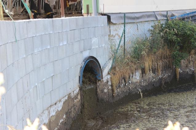 Canal flushing